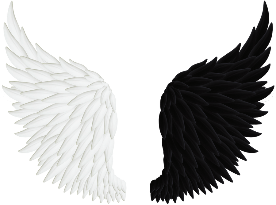 Angel Wing Black And White png