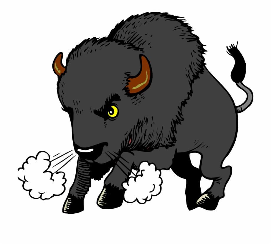 Animated Buffalo Animal Png