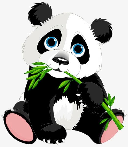 Baby Cartoon Panda For Animal Png