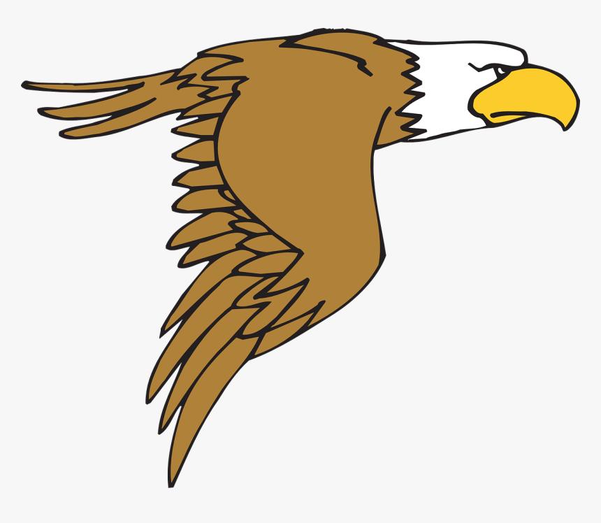 Bald Eagle Cartoon Free Images Png