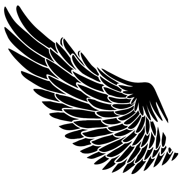 Black A Wing png