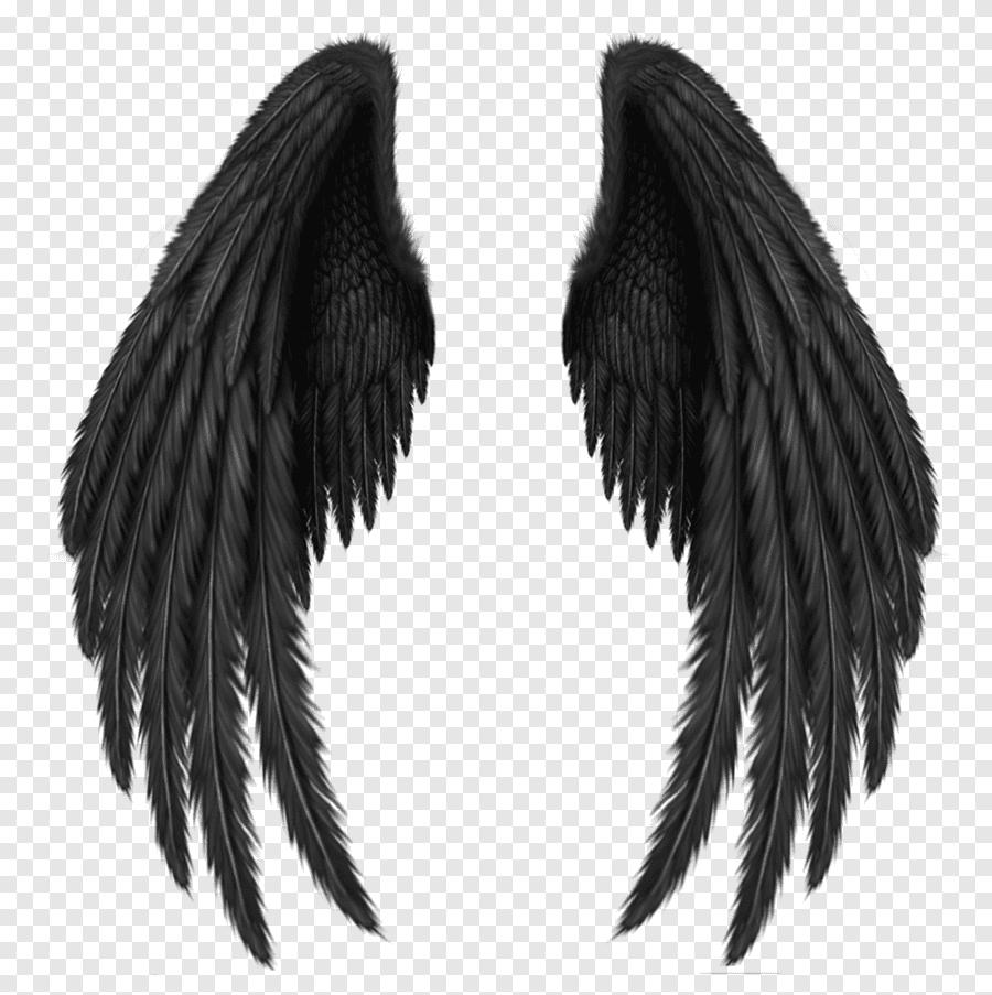 Black Wings png