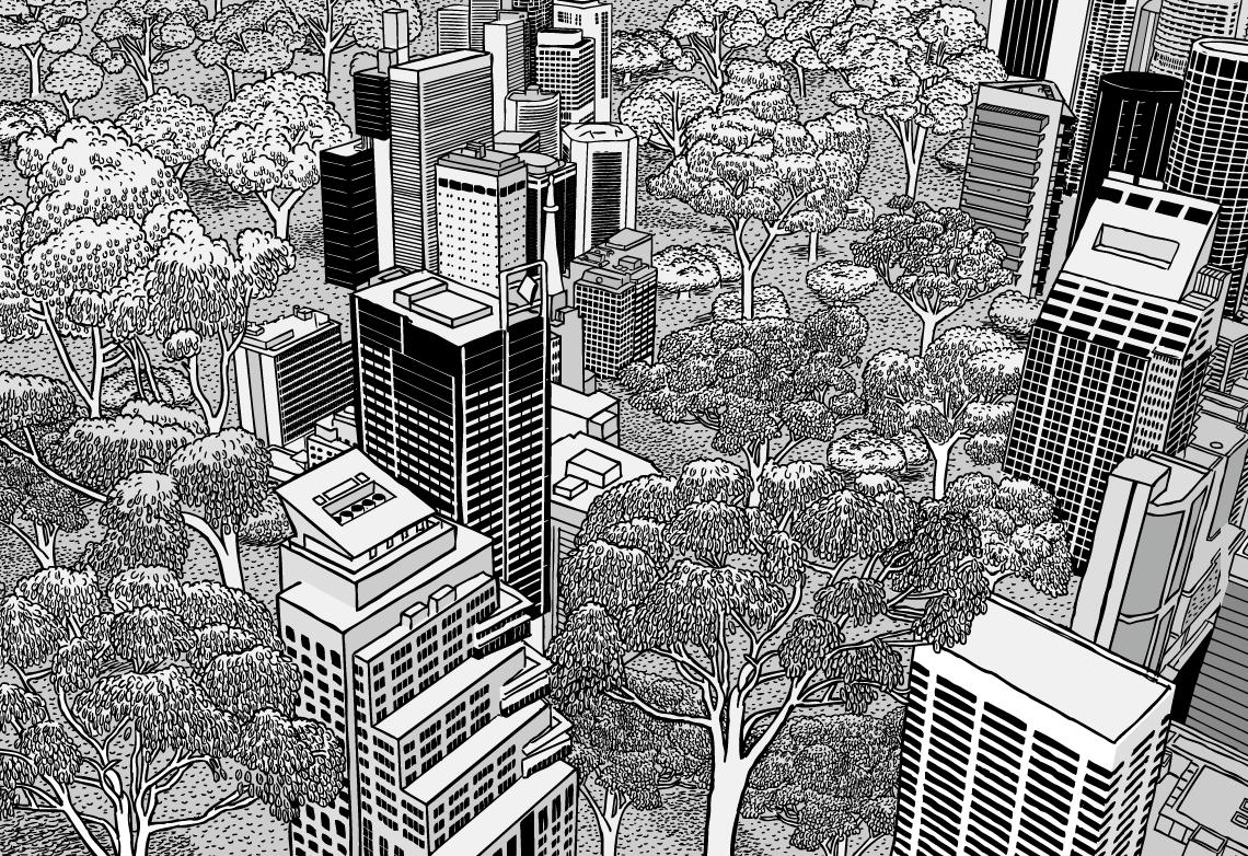 City Tree Eucalyptus Black And White Png