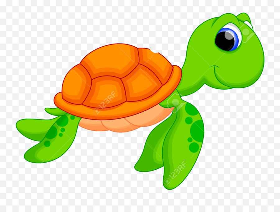 Cute Turtle Free Download Png