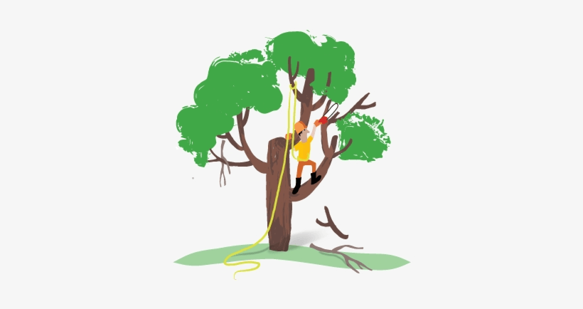 Download Dead Tree Free Pictures Png