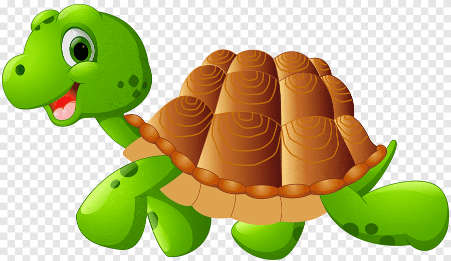 Green And Brown Turtle Cartoon Png