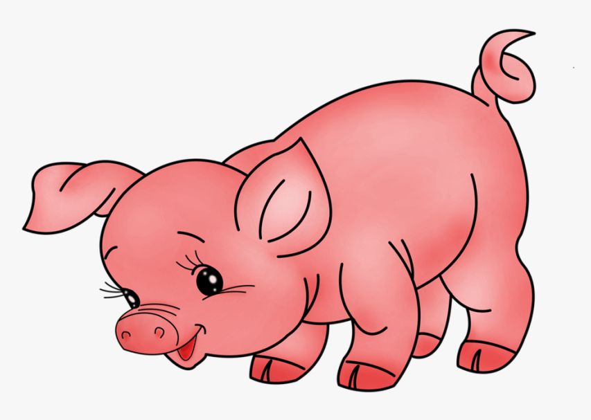 Pig Animal Free Pictures Png