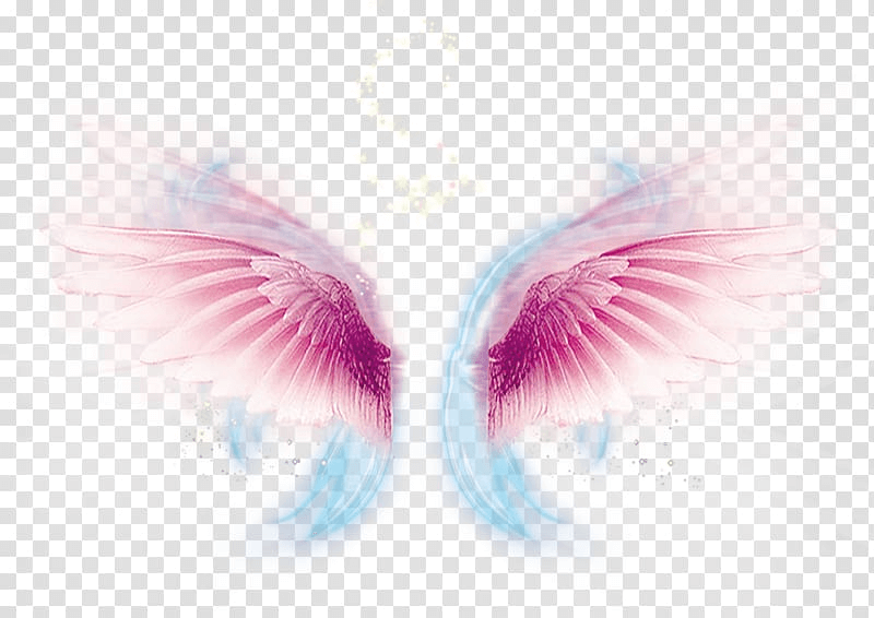 Pink And Yellow Wing png