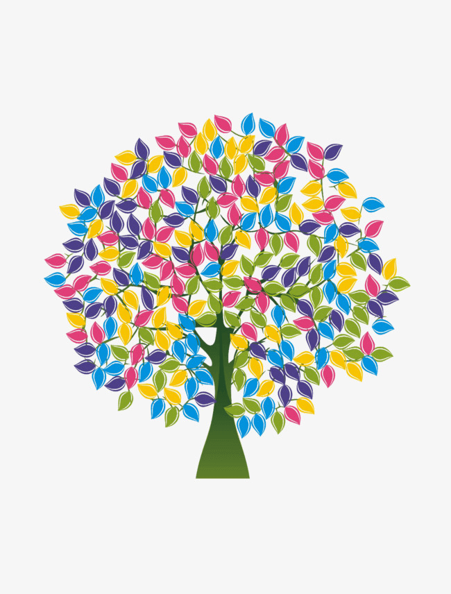 Rainbow Euucalyptus Tree Png