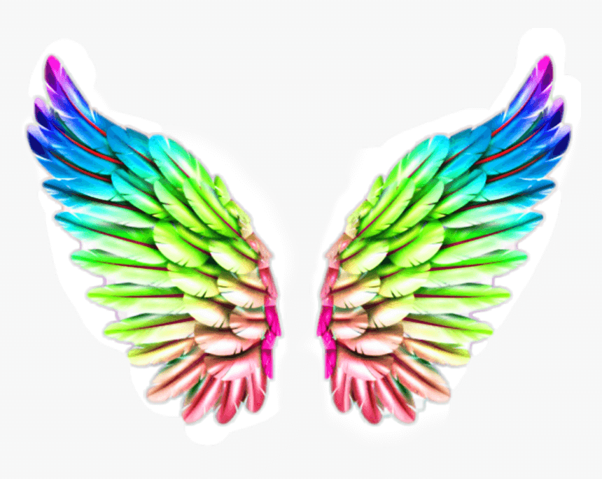 Rainbow Wing png