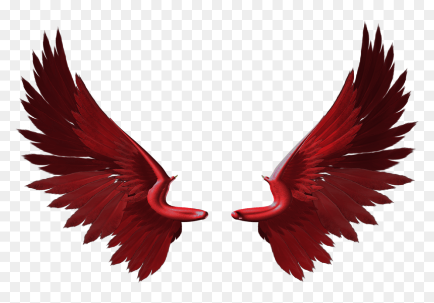 Red Wing Free Idea png