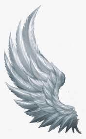 Side Angel Wings png