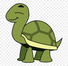 Turtle At Vector Png