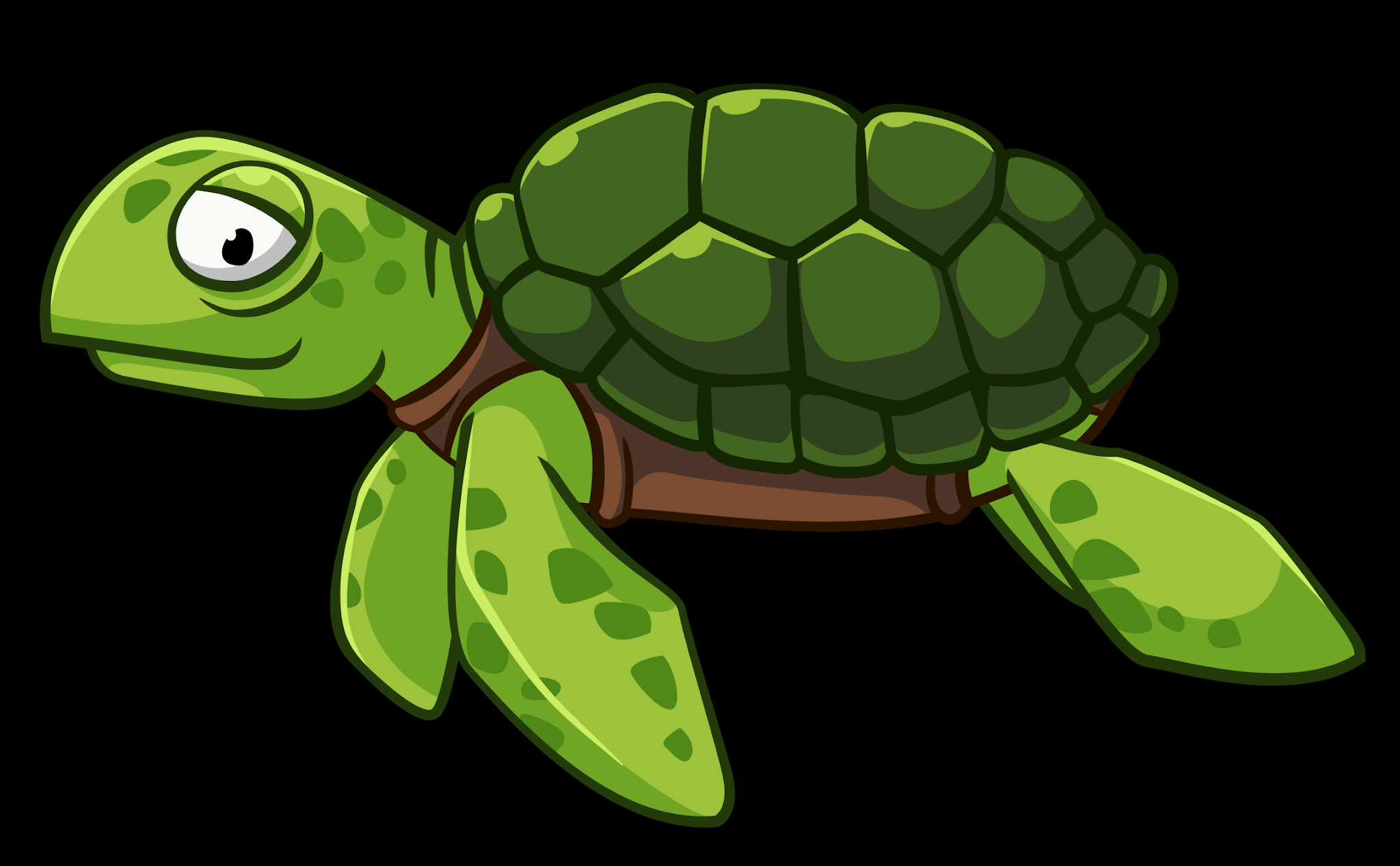 Turtle Swimming Png