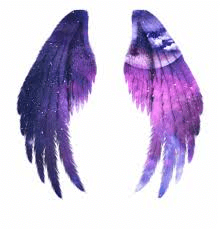 Wing Of Galaxy png